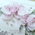 Stampin' Up! - SU - Orchidee - Orchideenzweig - Orchideenblueten - Grund zum Laecheln - Bluetenromantik - Creative Depot - Geschwungene Gruesse - Copics - Geburtstagskarte
